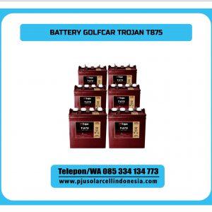 BATTERY-TROJAN-GOLFCAR-T875
