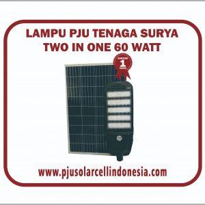 PJU-2in1-60W