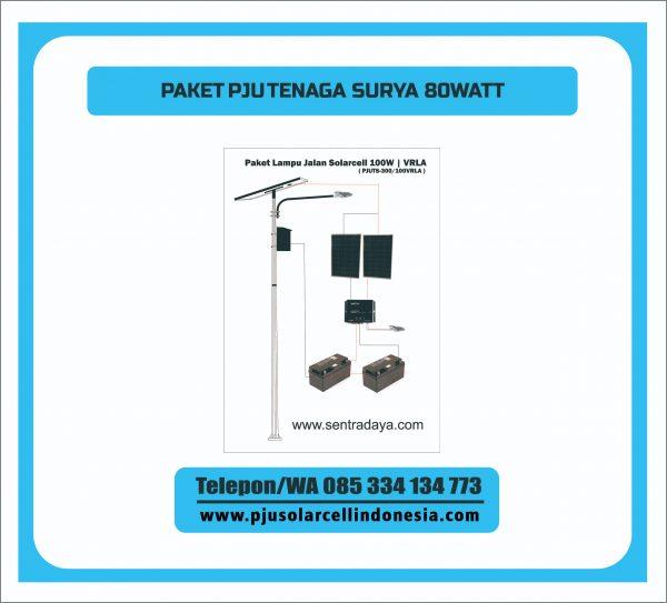 PJUTS-80W